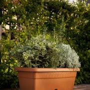 Volterra flowerbox terracotta