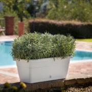 Volterra flowerbox white