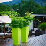 Kiam Square Pot Acid Green